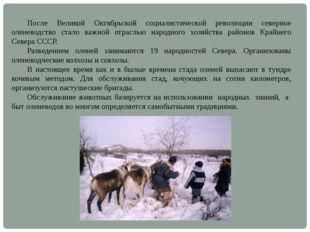 После Великой Октябрьской социалистической революции северное оленеводство с