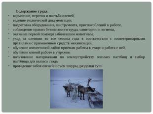 Содержание труда: кормление, перегон и пастьба оленей, ведение технической д