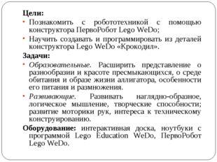 Цели: Познакомить с робототехникой с помощью конструктора ПервоРобот Lego WeD