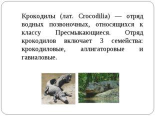 Крокодилы (лат. Crocodilia) — отряд водных позвоночных, относящихся к классу