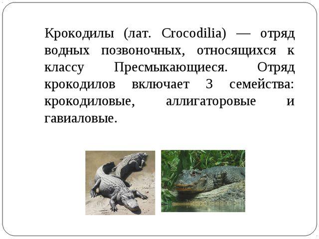 Крокодилы (лат. Crocodilia) — отряд водных позвоночных, относящихся к классу...