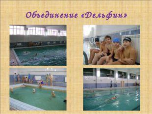 Объединение «Дельфин»