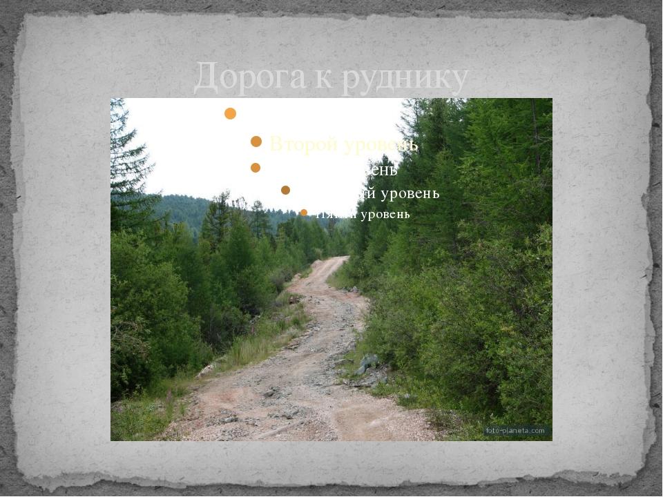Дорога к руднику