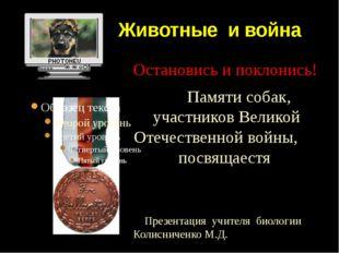 Животные и война Остановись и поклонись! Памяти собак, участников Великой От