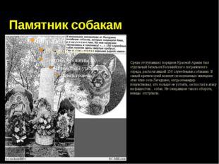 Памятник собакам Среди отступавших порядков Красной Армии был отдельный бата