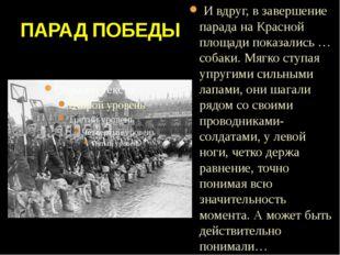 ПАРАД ПОБЕДЫ И вдруг, в завершение парада на Красной площади показались … соб
