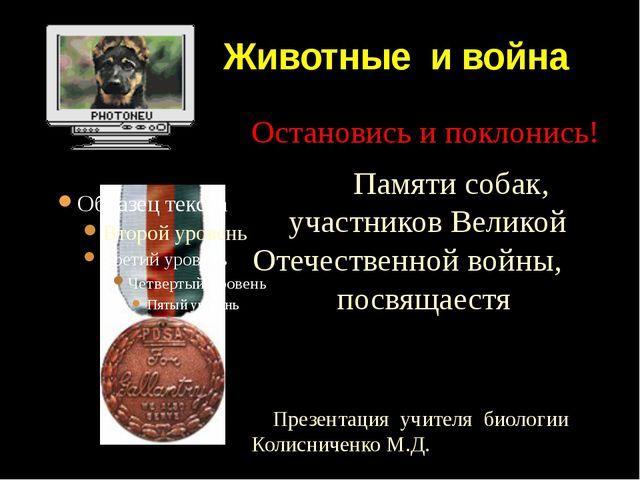 Животные и война Остановись и поклонись! Памяти собак, участников Великой От...