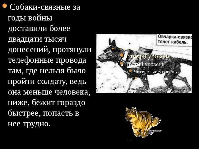 Собаки-связные за годы войны доставили более двадцати тысяч донесений, протя...