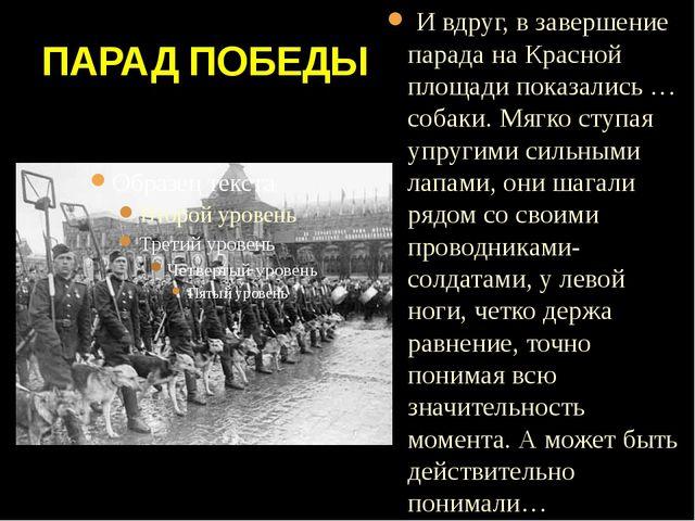 ПАРАД ПОБЕДЫ И вдруг, в завершение парада на Красной площади показались … соб...