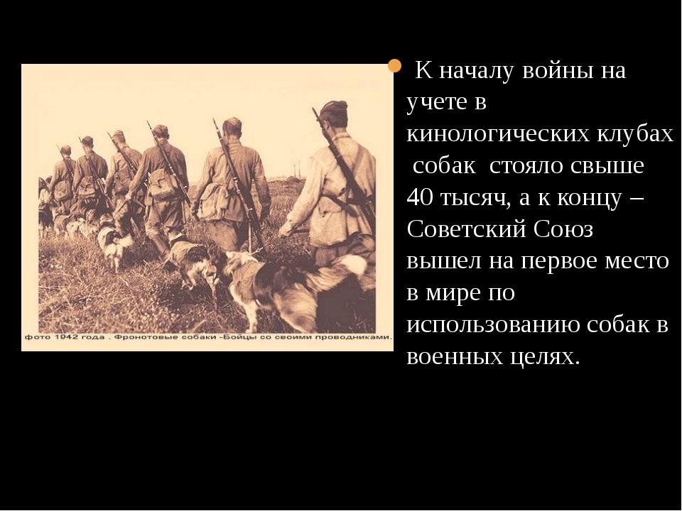 К началу войны на учете в кинологических клубах собак стояло свыше 40 тысяч,...