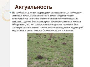 Актуальность На необрабатываемых территориях стали появляться небольшие земля