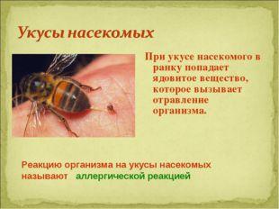 При укусе насекомого в ранку попадает ядовитое вещество, которое вызывает отр
