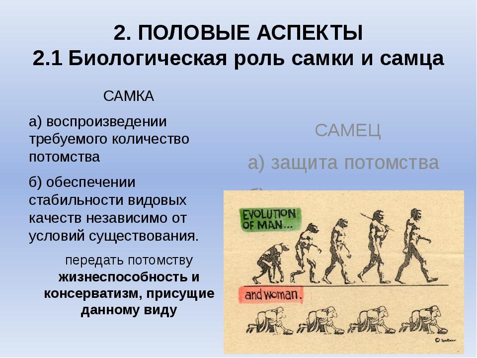 2. ПОЛОВЫЕ АСПЕКТЫ 2.1 Биологическая роль самки и самца САМКА а) воспроизведе...