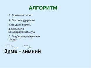 Зима - зимний АЛГОРИТМ 1. Прочитай слово. 2. Поставь ударение 3. Выдели корен