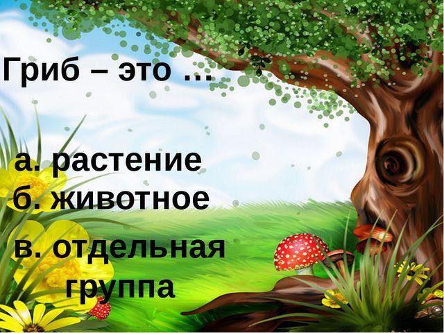Гриб – это … а. растение б. животное в. отдельная группа