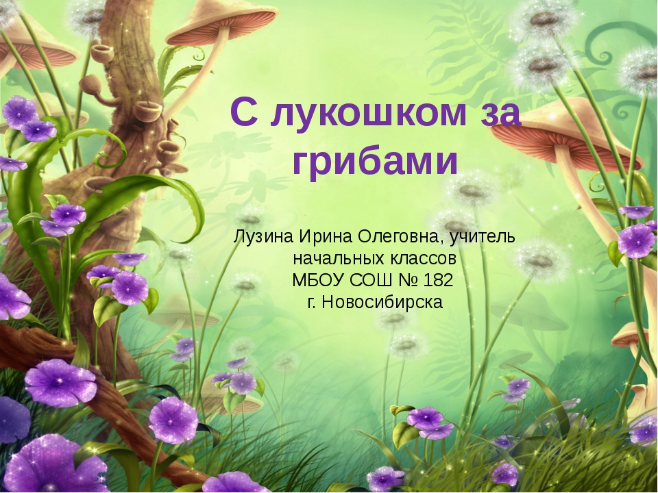 С лукошком за грибами Лузина Ирина Олеговна, учитель начальных классов МБОУ С...