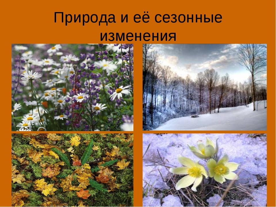 Природа и её сезонные изменения