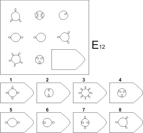прогрессивные матрицы Равена, серия E, карточка 12