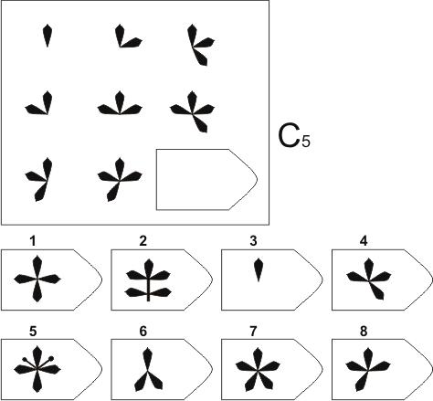 прогрессивные матрицы Равена, серия C, карточка 5