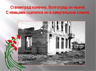 Сталинград конечно, Волгоград он нынче. С немцами сцепился он в смертельном к