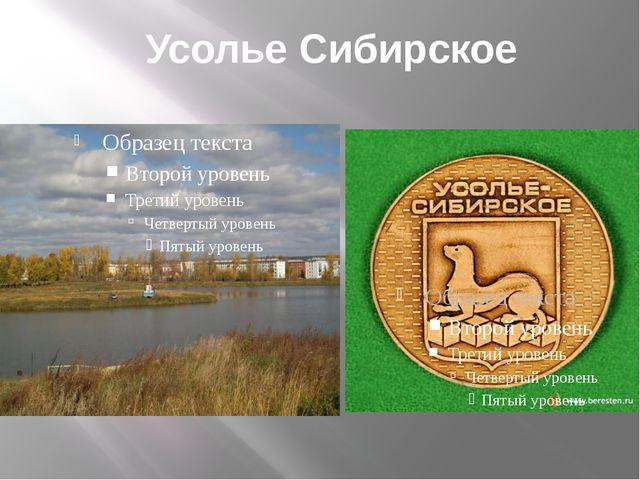 Усолье Сибирское