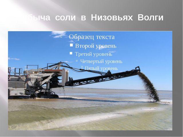 Добыча соли в Низовьях Волги