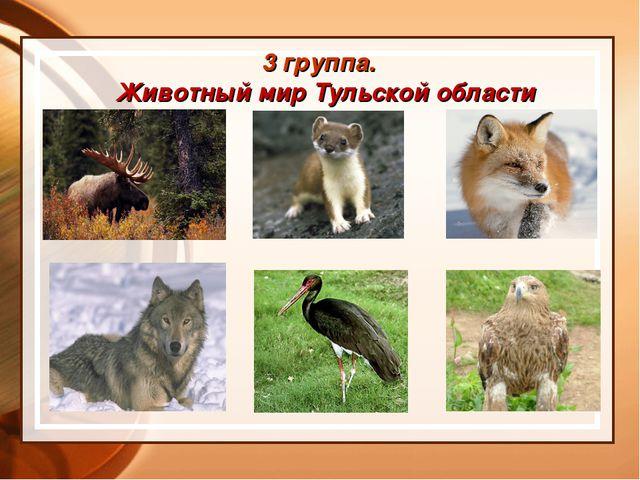3 группа. Животный мир Тульской области
