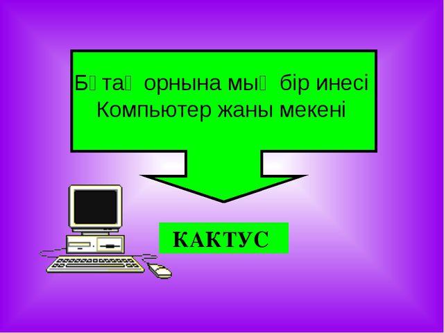 КАКТУС Бұтақ орнына мың бір инесі Компьютер жаны мекені
