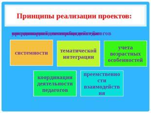 Принципы реализации проектов: