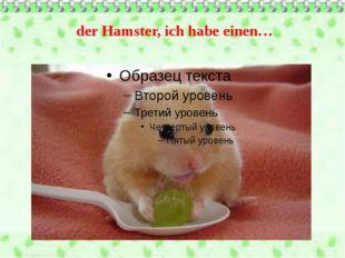 der Hamster, ich habe einen…