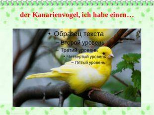 der Kanarienvogel, ich habe einen…