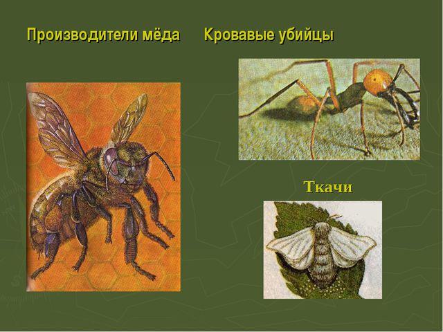 Производители мёда Кровавые убийцы Ткачи
