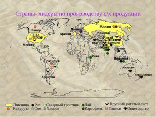 Страны- лидеры по производству с/х продукции Россия США Китай Бразилия Индия
