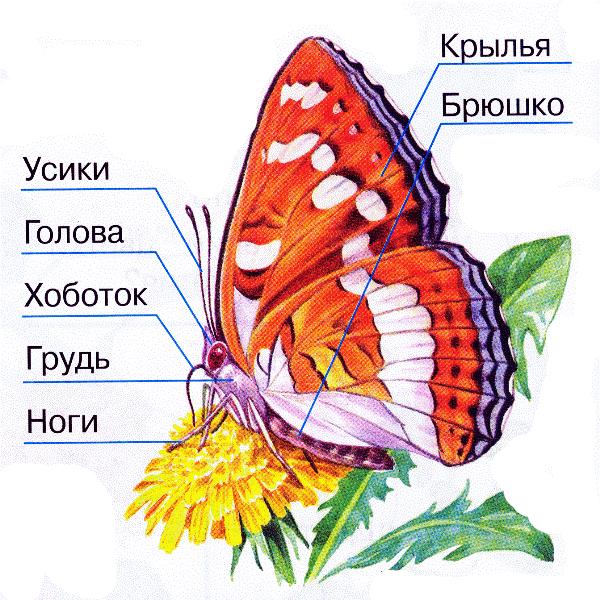 Image4957