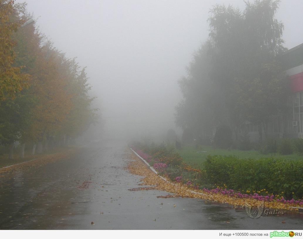 http://apikabu.ru/img_n/2011-09_3/y9d.jpg