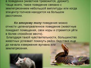 Первый тип — эмоциональное изменение в поведении (животное тревожится, дрожи