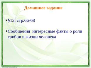 Интернет – ресурсы Земной шар с зелеными листьями http://r-d-d-r.ru/attachmen