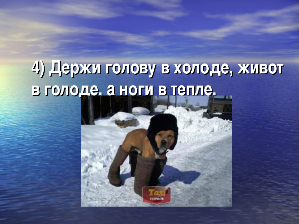 4) Держи голову в холоде, живот в голоде, а ноги в тепле.