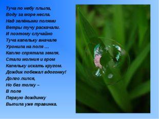 Туча по небу плыла, Воду за море несла. Над зелёными полями Ветры тучу раскач