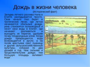 Дождь в жизни человека (Исторический факт) Загадка летнего разлива Нила в Еги