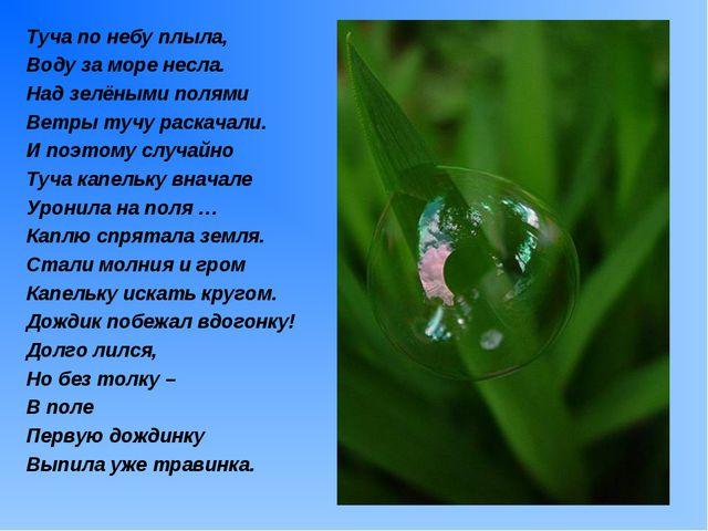 Туча по небу плыла, Воду за море несла. Над зелёными полями Ветры тучу раскач...