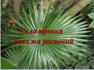 Сила трения в жизни растений