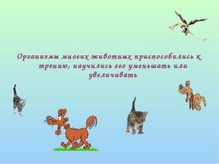 Организмы многих животных приспособились к трению, научились его уменьшать и