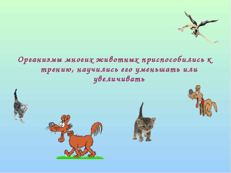 Организмы многих животных приспособились к трению, научились его уменьшать и...