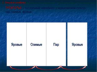 ТРЁХПОЛЬЕ - 3-х польный севооборот с чередованием культур: пар, озимые, яровы