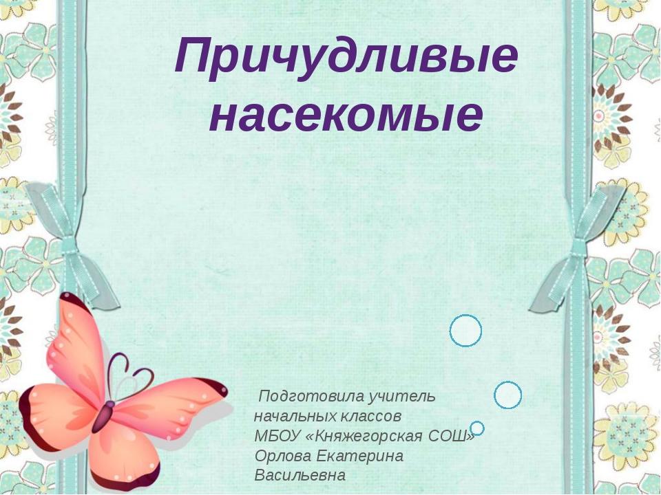 Причудливые насекомые Подготовила учитель начальных классов МБОУ «Княжегорска...