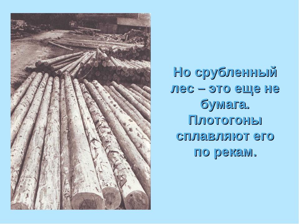 Но срубленный лес – это еще не бумага. Плотогоны сплавляют его по рекам.