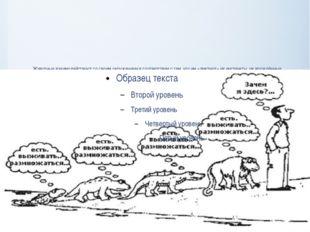 Животные взаимодействуют со своим окружением в соответствии с тем, что им «ди
