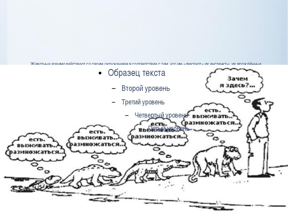 Животные взаимодействуют со своим окружением в соответствии с тем, что им «ди...