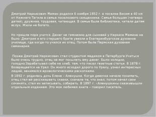 Дмитрий Наркисович Мамин родился 6 ноября 1852 г. в поселке Висим в 40 км от